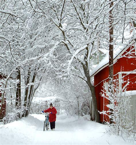 winter wonderland        impressed