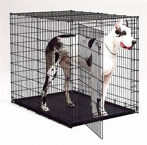 Crate for great danes for Great dane dog cage