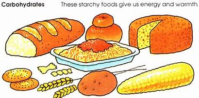 Carbohydrates Carbohydrate Clipart Starch Foods Clip Grains