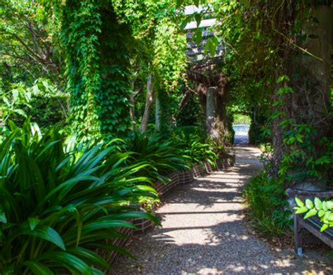 discovery gardens dallas discovery gardens dallas offers a beautiful botanic