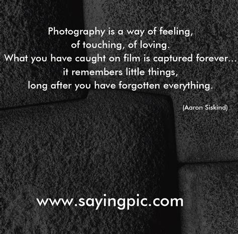 11 Great Photography Quotes And Saying To Inspire You