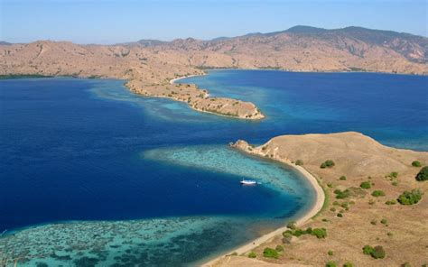Boat Trip Lombok To Flores by Adventures In Indonesia Lombok To Flores By Boat
