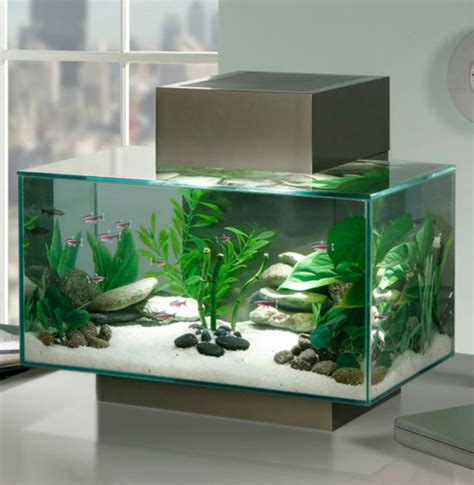 idee ilot central cuisine aquarium design idées originales de meubles aquarium