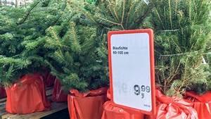 Baumarkt In Essen : essener baumarkt verkauft bereits weihnachtsb ume essen ~ Markanthonyermac.com Haus und Dekorationen