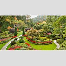 Garten Gestalten Oder Neu Anlegen  10 Ideen, Bilder