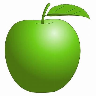 Clipart Apple Clip Apples Clipground Fruit Oranges