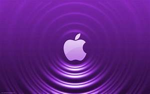 Purple Wallpapers for Laptop