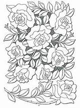 Patterns Leather Floral Sheridan Tooling sketch template