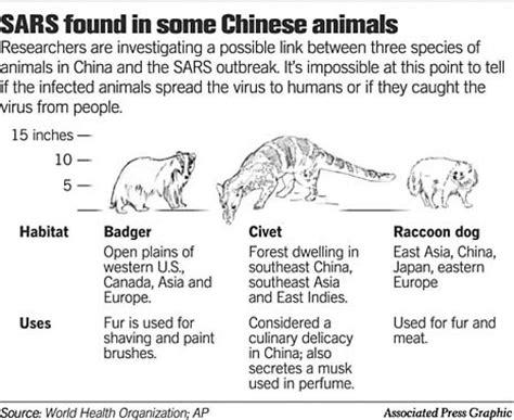 Chinese Animal Markets SARS Virus