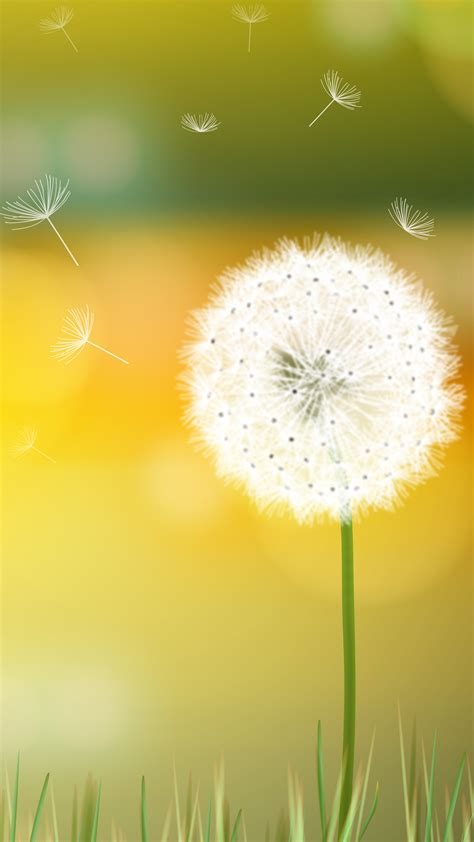 Dandelion Breeze Hd Wallpaper For Your Mobile Phone 5489