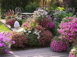 Welche Pflanzen Für Balkon : terrassengestaltung mit leuchtstarken blumen in pink ~ Michelbontemps.com Haus und Dekorationen