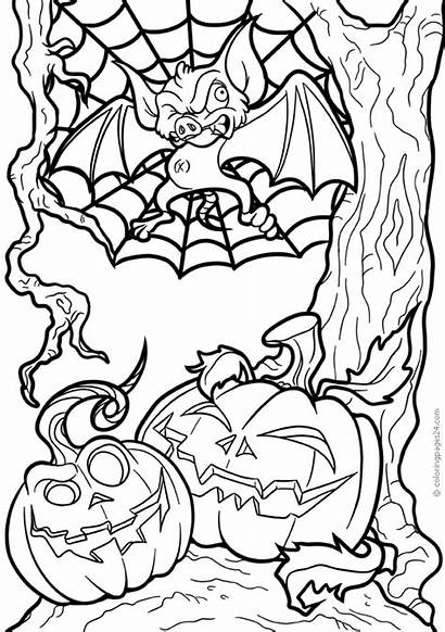 Halloween Coloring Scary Bat Spiders Brujas Noche