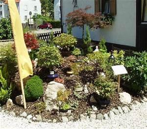 2006 bilder 1 carmens bonsai garten online shop fur bonsai With whirlpool garten mit bonsai magnolie kaufen