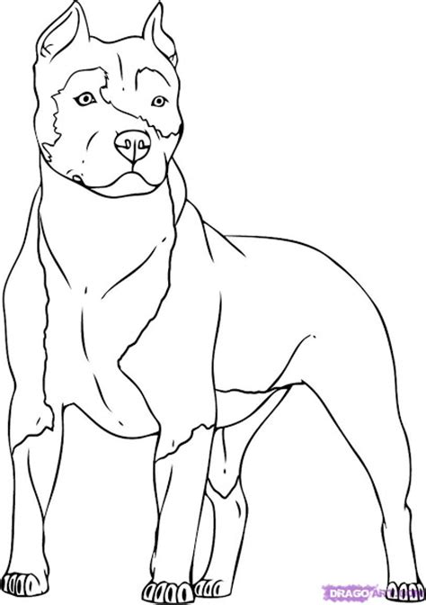 Dog With Blog Coloring Pages – Colorings.net