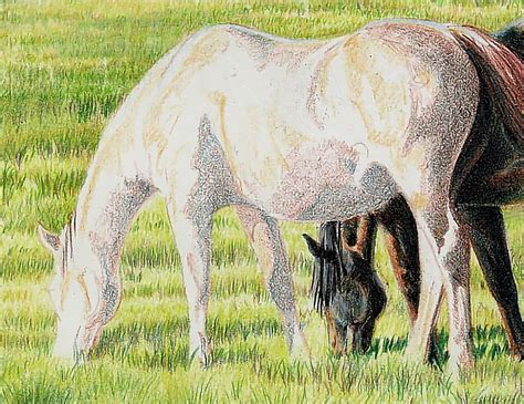 draw  realistic chestnut horse  colored