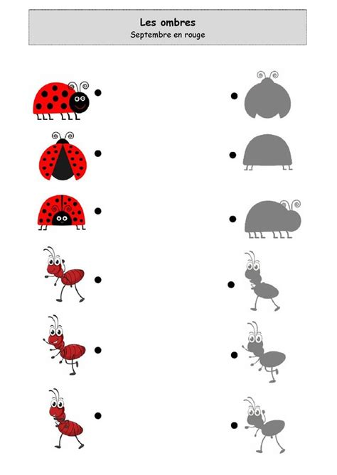 les ombres septembre en rouge hmyz bugs insects