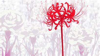 Ghoul Tokyo Anime Lily Spider Flower Flowers