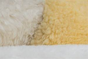 Free Images   Structure  Leather  Texture  Fur  Fluffy