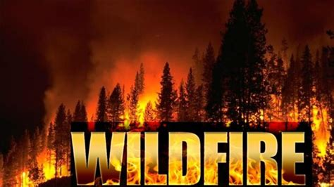 read  translate wildfire learn words   fire