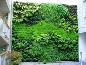 Mur Vegetal Exterieur : le design v g tal pousse en ville n oplan te ~ Melissatoandfro.com Idées de Décoration