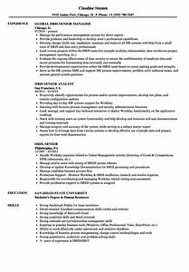 Workday Resume Hris Senior Resume Samples Velvet Jobs
