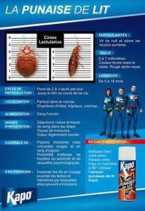 Kapo Punaise De Lit : 17 best images about insecticides kapo on pinterest blog ~ Dailycaller-alerts.com Idées de Décoration
