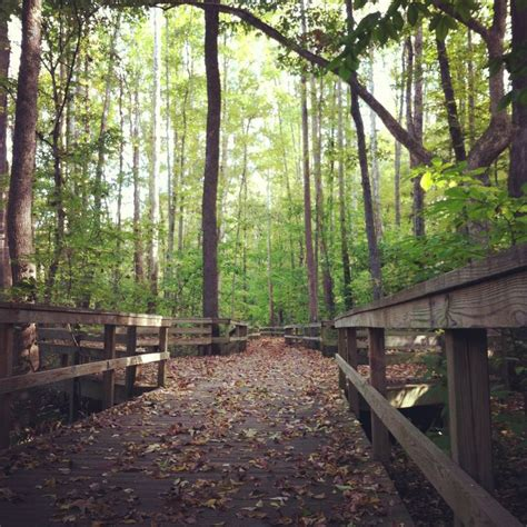 17 Best Images About Field Trips In Nc On Pinterest