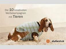 Die 10 kreativsten Werbekampagnen mit Tieren