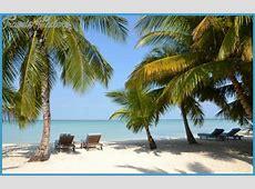 The Bahamas Guidehtml Autos Weblog