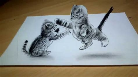 cute cat drawing  anamorphic illusion youtube