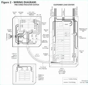 Center For Business Insight Auto Electrical Wiring Diagram