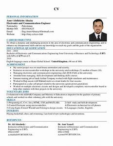 Eng  Amer Alnaizy Cv  English