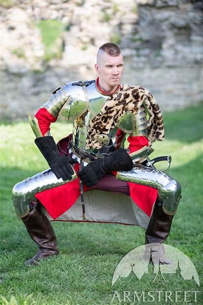 Polish Armor Hussar Leg Steel Stainless Medieval