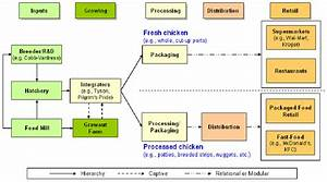 The Broiler Value Chain For Chicken