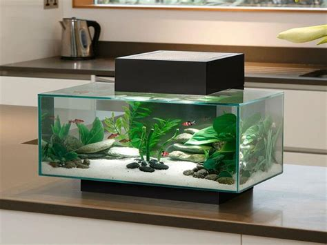 25 best ideas about aquarium accessories on fish tank accessories fish tanks and