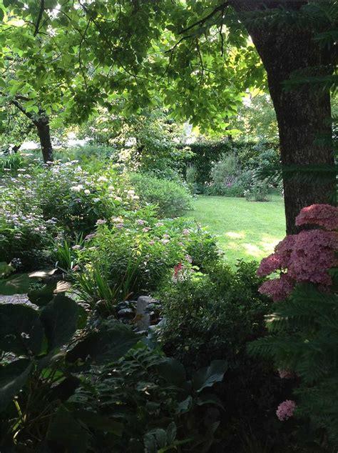 Il Curriculum Verde Di Paolo  Amici In Giardino