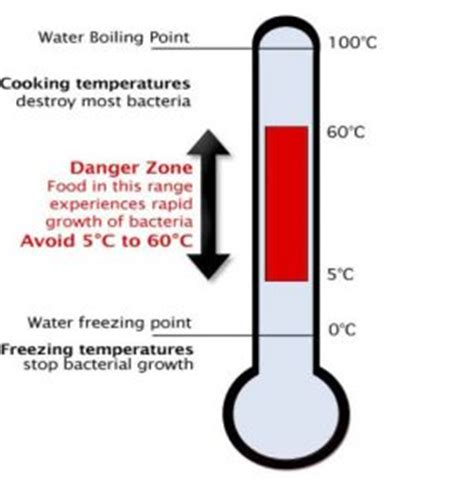 temperature danger zone how to keep food safe in the summer heat a less irritable life