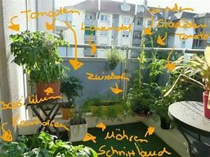 gemuse anbauen auf dem balkon annette uber den With garten planen mit kräuter auf balkon anpflanzen