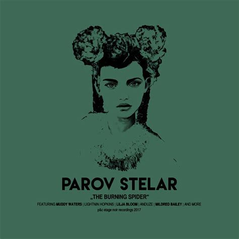 burning spider  parov stelar mp