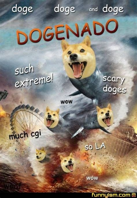 Funniest Doge Meme - 1000 images about much wow such doge very shibe on pinterest the internet trucks and
