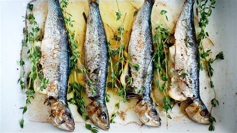broiled sardines  lemon  thyme recipe nyt cooking