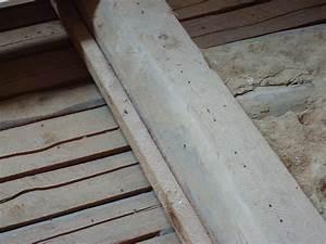 Dämmung Dach Kosten : sanierung holzbalkendecke und d mmung dachschr gen ~ Articles-book.com Haus und Dekorationen