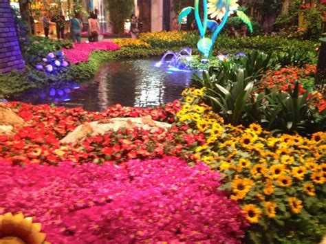 bellagio s flower garden picture of bellagio las vegas