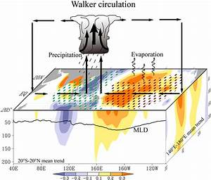 Schematic Diagram Of The Intensification Of The Walker
