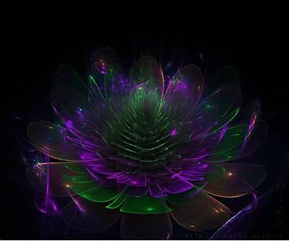 Animated Gifs Mesmerizing Hypnotic Fractal Flower Please