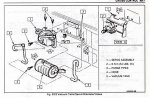 Need A Vacuum Diagram For The  U0026quot Cruise U0026quot
