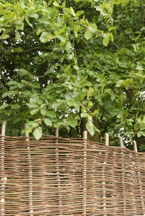 Sichtschutz Garten 140 Cm sichtschutz aus weide 180cm x 140cm 76 99
