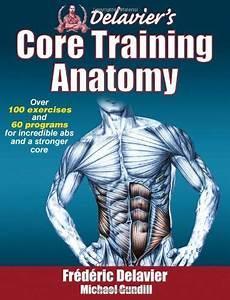 Strength Training Anatomy Pdf  Anatomy Pdf