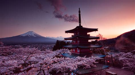 wallpaper mount fuji japan cherry blossom pink sky