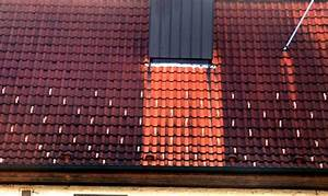 Moos Entfernen Dach : warum sind auf manchen d chern helle streifen von oben bis unten ~ Orissabook.com Haus und Dekorationen